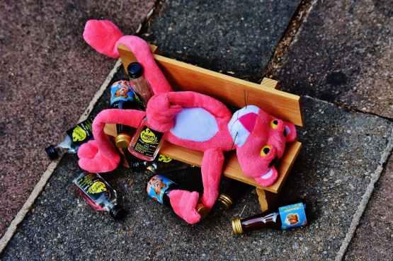 alcohol bottles celebration color